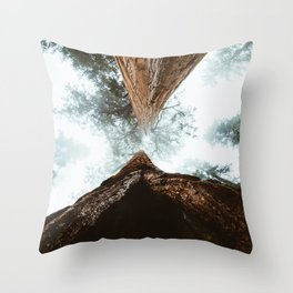 Stand in Awe of the Giant Forest Throw Pillow