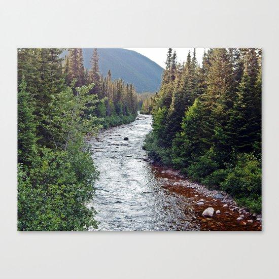 Forest Paradise Canvas Print
