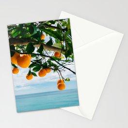 Amalfi Coast Oranges IV Stationery Cards