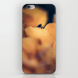 Disappear iPhone Skin