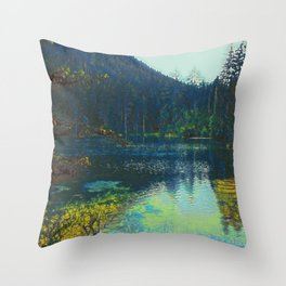 Lake IV Throw Pillow