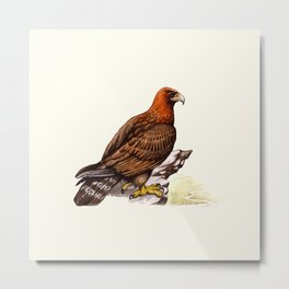 Watercolor Golden Eagle Metal Print