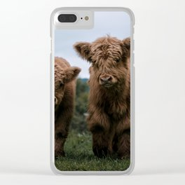 Scottish Highland Cattle Calves - Babies playing II Clear iPhone Case