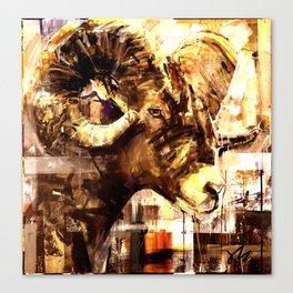Rocky Mountain Ram in burnt sienna Canvas Print