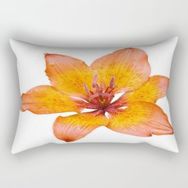 Coral Colored Lily Isolated on White Rectangular Pillow