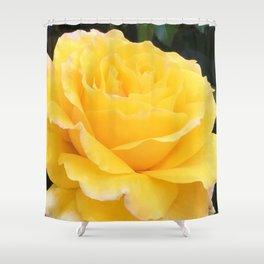 My Yellow Rose Shower Curtain
