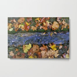 Alhambra Palace forest in autumn Metal Print