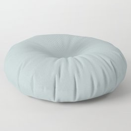 Best Seller Pastel Blue Grey Solid Color Pairs To Behr Watery Gray HDC-CT-26 Trending Color 2019 Floor Pillow