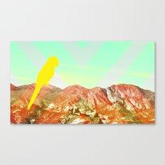 Quinn Canvas Print