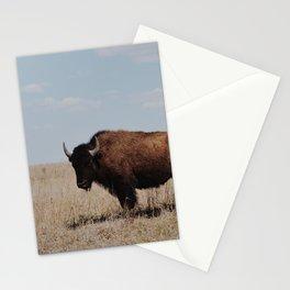 Big Horn Bison Stationery Cards