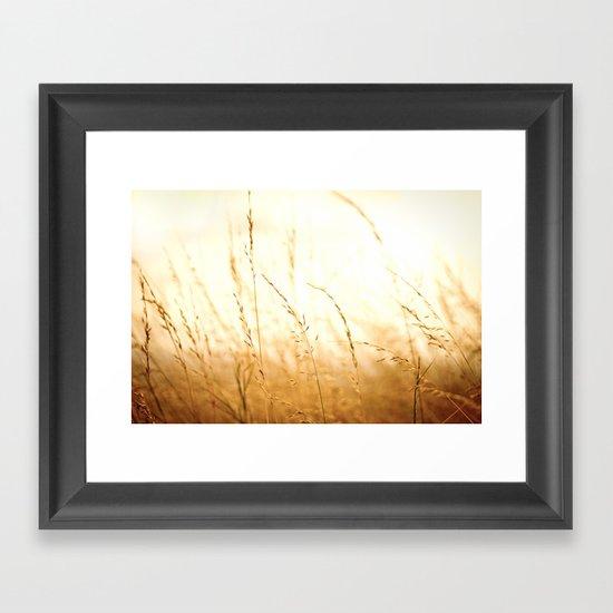 Fields of Bronze Framed Art Print