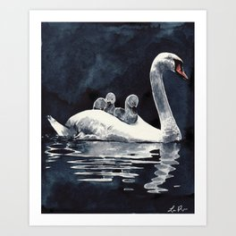 Swan Mother and Babies On the Lake Art Print