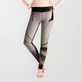 Side View of A Pink and White Osteospermum Leggings
