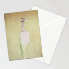 The Lady in White Stationery Cards