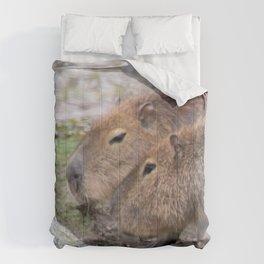 Capybaras Comforters