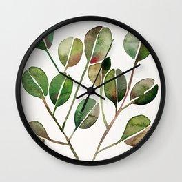 Silver Dollar Eucalyptus – Green Palette Wall Clock