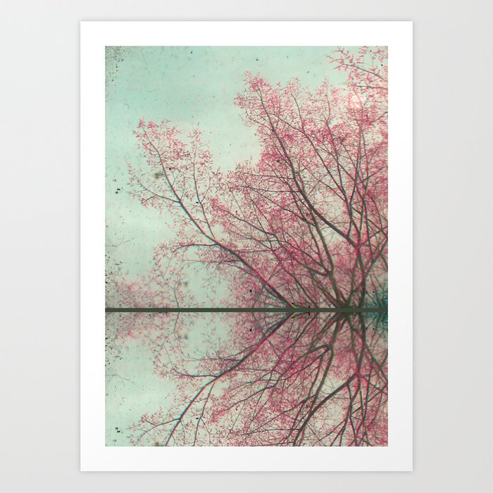 Past Reflections Art Print