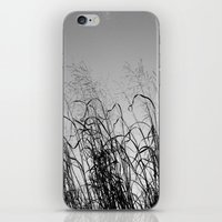 calligraphy iPhone & iPod Skins featuring CALLIGRAPHY by dannimarie