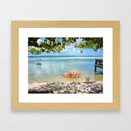 Conch Shells Framed Art Print