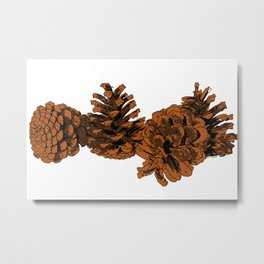 Brown Pine Cones Metal Print