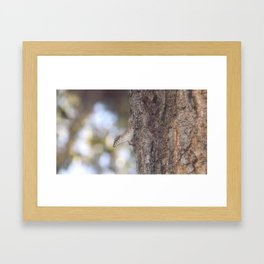 Blending Framed Art Print
