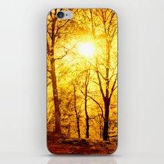 Soft sunset iPhone & iPod Skin