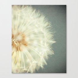 Wish. Canvas Print