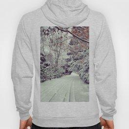 Winter Wonderland Hoody