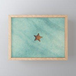 Starfish Aquamarine Framed Mini Art Print
