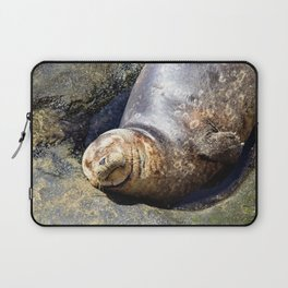 Smiling California Seal Makes Me Smile by Reay of Light Photography Laptop Sleeve