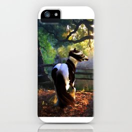 Gypsy Fall iPhone Case