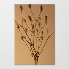 Florales · plant end 3 Canvas Print