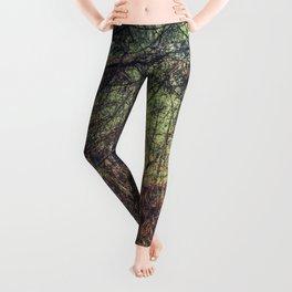 Forest 1 Leggings