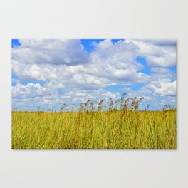 Clouded Sky Canvas Print