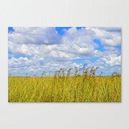 Clouded Sky Canvas Print