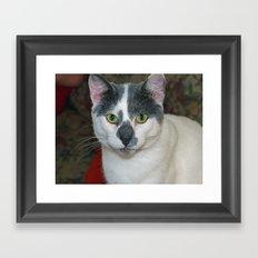 Mister Pants Framed Art Print