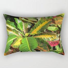 Beautiful Croton Rectangular Pillow