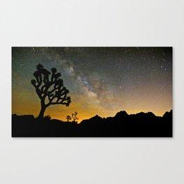 Joshua Tree, Milky Way   7/16/14 Canvas Print