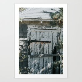 Abandoned Shack Art Print