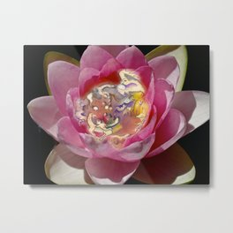 Fairy Lily Metal Print