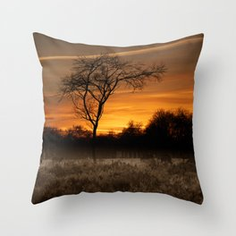 A Herd Of Red Deer At Sunset Throw Pillow