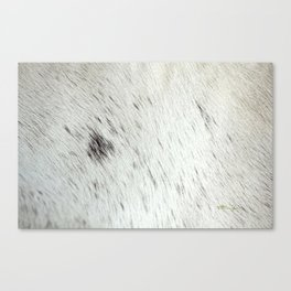 SPUNKY Canvas Print