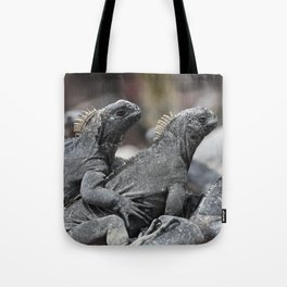 Three marine iguanas hanging out together Tote Bag