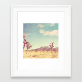 Joshua Tree photograph, desert print, No. 189 Framed Art Print