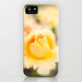 Rose yellow iPhone Case