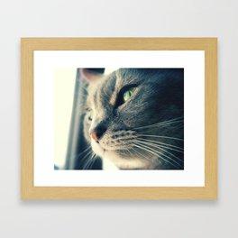 Xena Framed Art Print