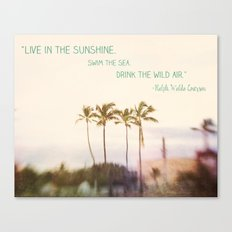 Sunshine, Sea, Air Canvas Print