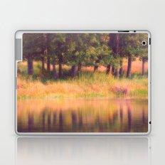 Pastel Reflections Laptop & iPad Skin