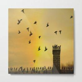 Rooftop Birds Metal Print