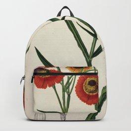 Flower helenium atropurpureum Backpack